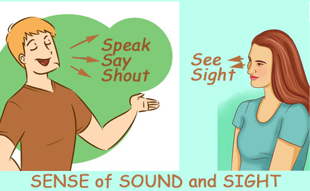 see-sound